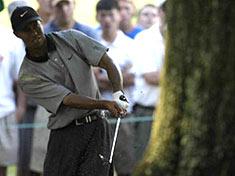 Tiger Woods tavoittelee toista voittoa Players Championshipissa &copy Getty Images