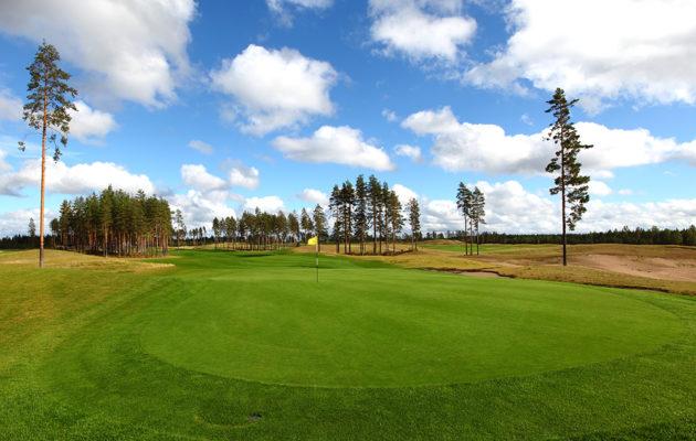 Golfreikä päättyy aina viheriölle, jossa myös lipulla merkitty reikä sijaitsee.
