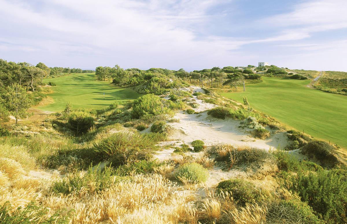 Golf Magazine arvosti Oitavos Dunesin viime vuoden 65. parhaaksi kentäksi maailmassa.